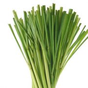 lemongrass copy